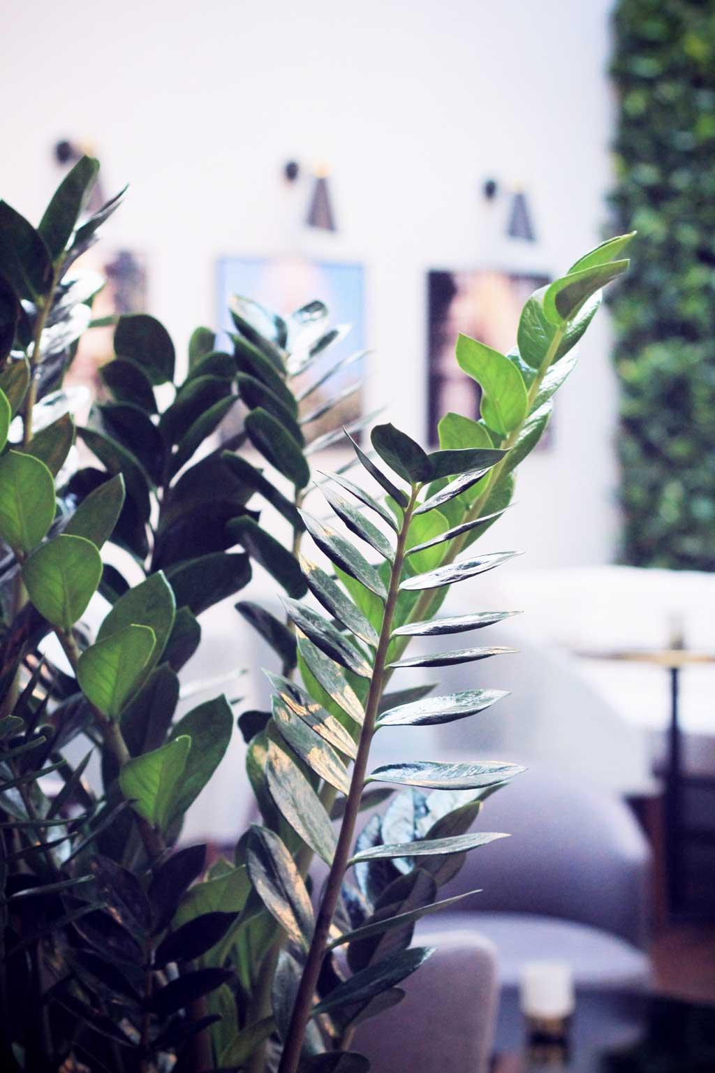 Hotel-Parisis-Paris-17