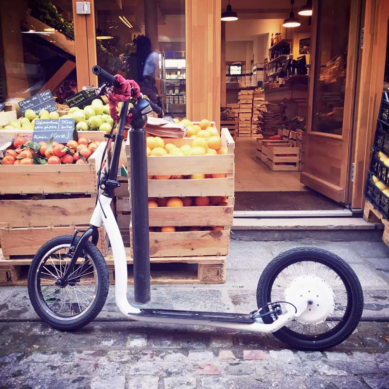 SmartPed-FlyKly-01