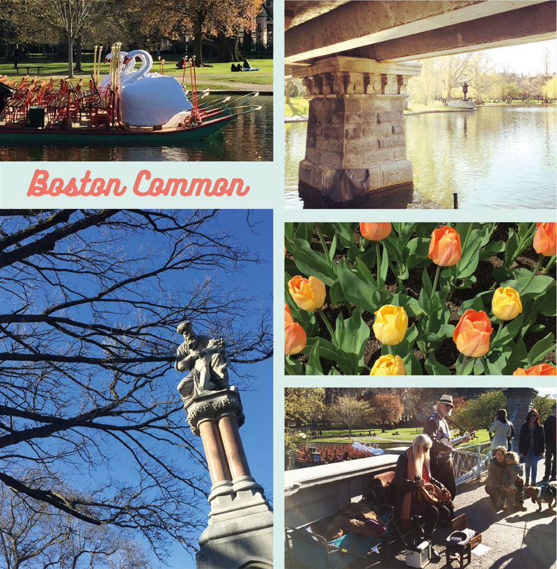 Boston-cityguide-13