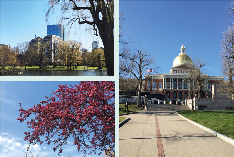 Boston-cityguide-14