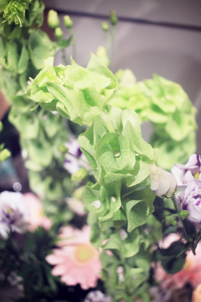 Oya-fleurs-03